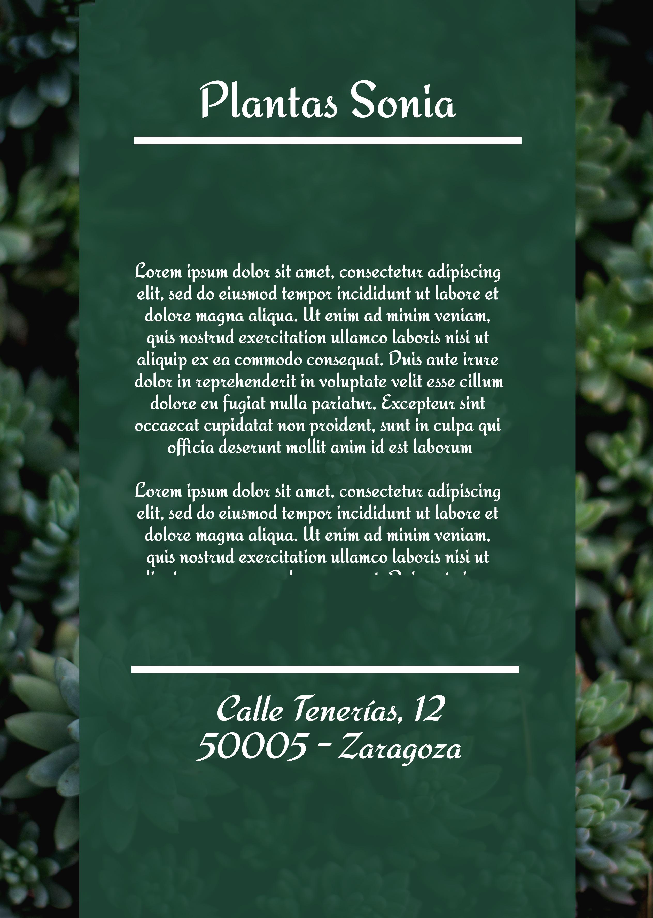 Flyer vertical Plantas y Jardín