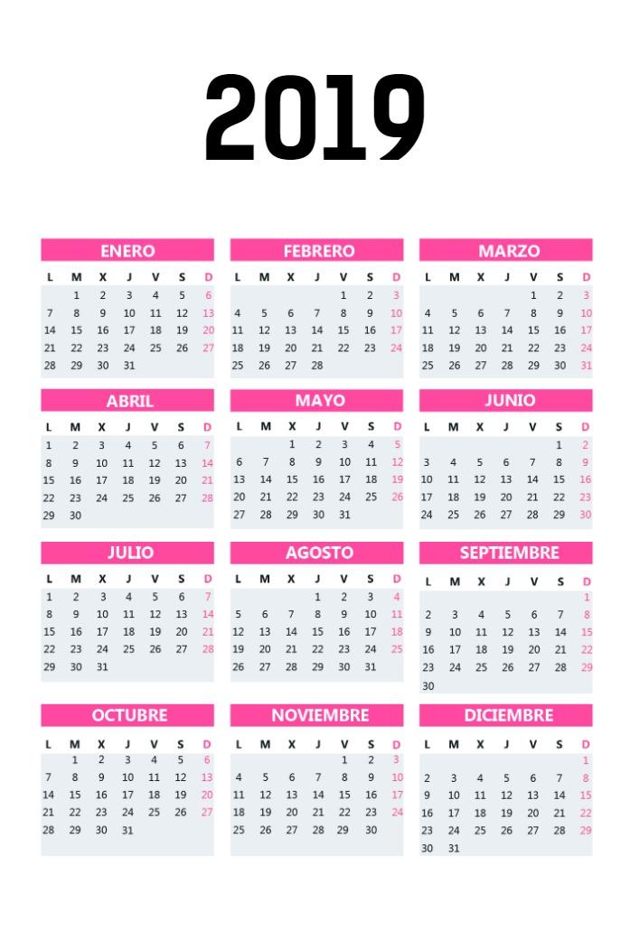 Calendario Bolsillo vertical_rosa