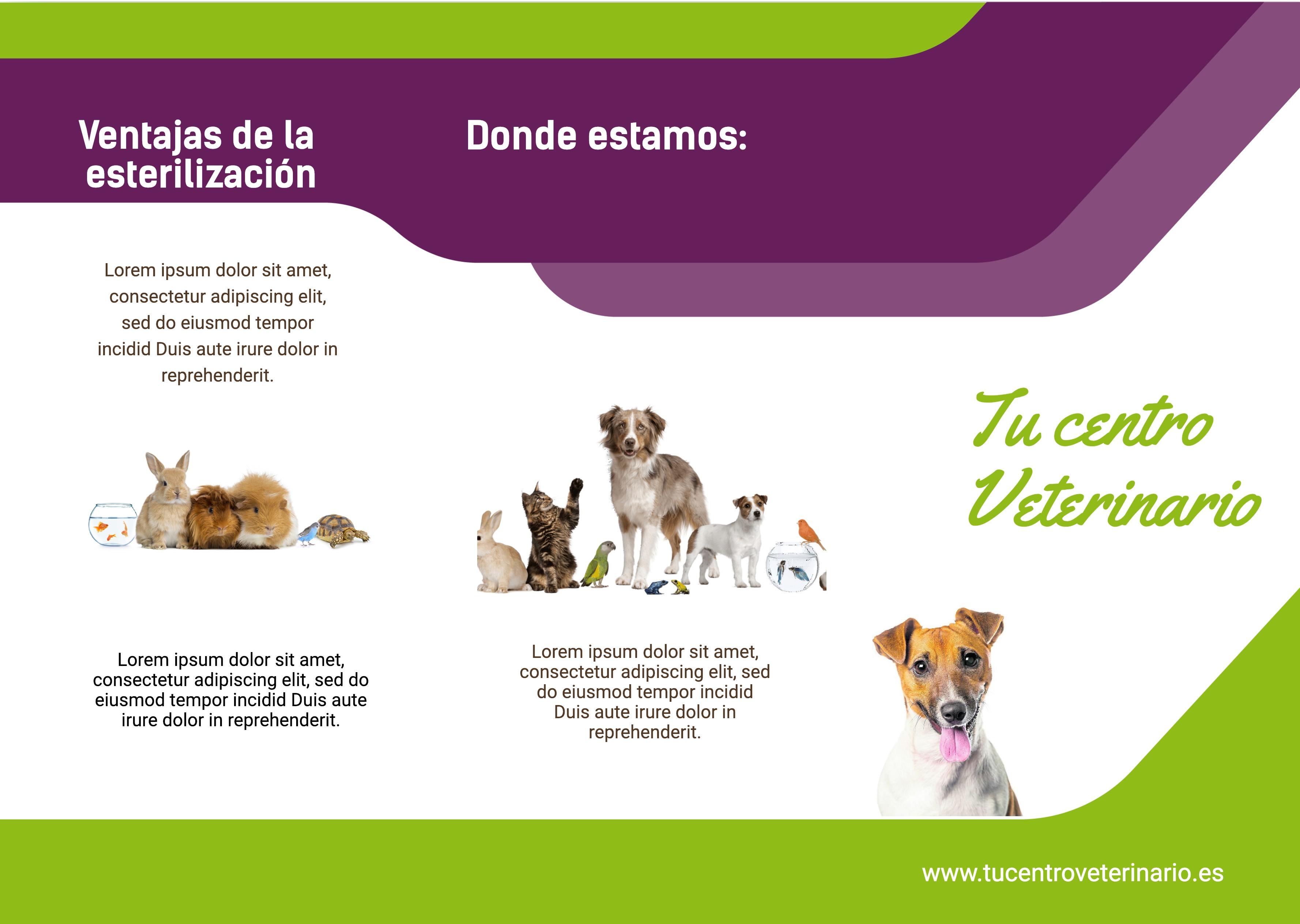 Trípticos centro veterinario